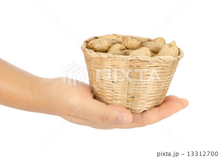 Peanutsの写真素材 [13312700] - PIXTA