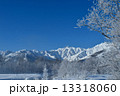白馬 冬景色 雪景色の写真 13318060