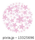 ソメイヨシノ 桜 花のイラスト 13325696