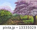 桜のある風景 13335029