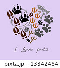 pets footsteps card 13342484
