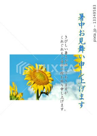 暑中見舞いテンプレート・青空に夏雲と大輪のヒマワリ1輪・青文字「暑中お見舞い申し上げます」コメント1種あり縦位置 13349583