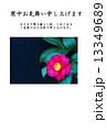 寒中お見舞いテンプレート・椿と山茶花の交配種である寒椿の花一輪・横書き黒文字「寒中お見舞い申し上げます」上段に寒中お見舞いコメントあり縦位置 13349689