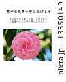 寒中お見舞いテンプレート・千重咲きの乙女椿の花一輪・横書き黒文字「寒中お見舞い申し上げます」寒中お見舞いコメントあり縦位置 13350149
