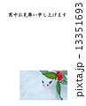 寒中お見舞いテンプレート・雪中に雪うさぎとセンリョウの実・横書き黒文字「寒中お見舞い申し上げます」コメントなし縦位置 13351693
