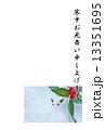 寒中お見舞いテンプレート・雪中に雪うさぎとセンリョウの実・縦書き行書体黒文字「寒中お見舞い申し上げます」コメントなし縦位置 13351695
