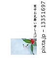 寒中お見舞いテンプレート・雪中に雪うさぎとセンリョウの実・縦書き黒文字「寒中お見舞い申し上げます」コメントなし縦位置 13351697