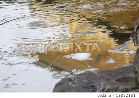 金閣寺の水鏡 13352131