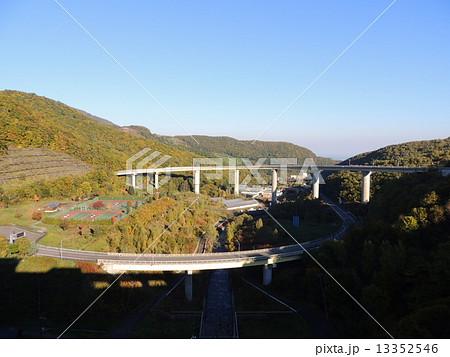 朝里ダムの紅葉 13352546