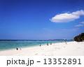 エメラルドブルー 海 南国の写真 13352891