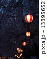 夜のしだれ桜と提灯 13395652