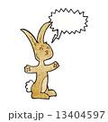 うさぎ ウサギ 兎のイラスト 13404597