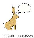 うさぎ ウサギ 兎のイラスト 13406825
