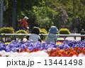 公園 13441498