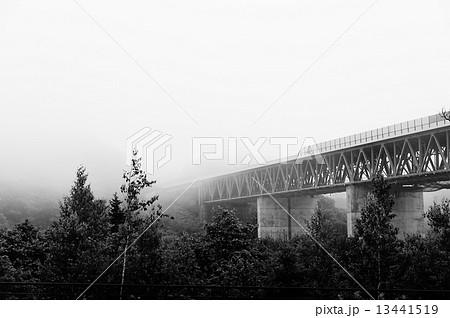 霧の陸橋 13441519