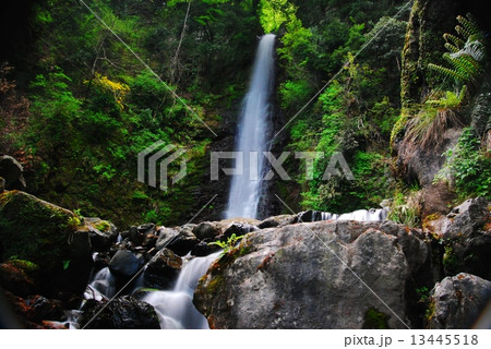 滝シリーズ~養老の滝 13445518