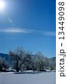 白馬 雪景色 冬の写真 13449098