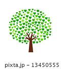 ハートの緑の木 13450555