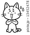 謝る ベクター 猫のイラスト 13452478
