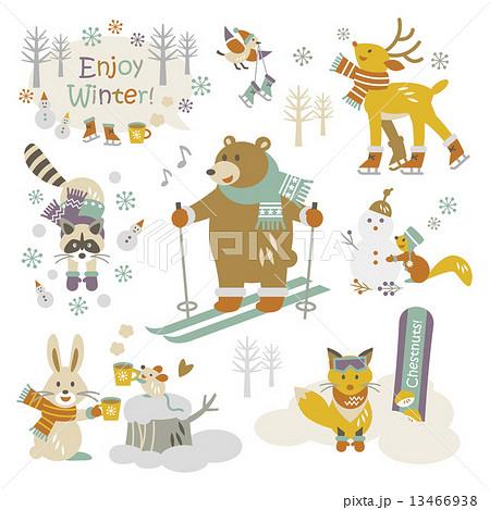 冬を楽しむ動物たち 13466938