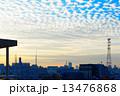 東京スカイツリー 青空 うろこ雲の写真 13476868