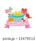 母の日 アイコン ベクターのイラスト 13479513