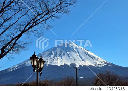 富士 13493318