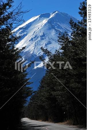 冨士山 縦 13493319
