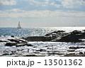 海辺 海原 海の写真 13501362