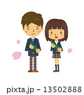 高校生 卒業 男女 桜 花びら 13502888