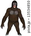 動物 ゴリラ ローランドゴリラのイラスト 13534850