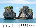海 小型 狭いの写真 13556444