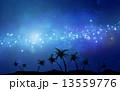 椰子の木 天の川 夜空のイラスト 13559776