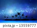 天の川 椰子の木 星空のイラスト 13559777