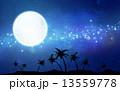 天の川 椰子の木 月のイラスト 13559778