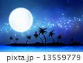 天の川 椰子の木 月のイラスト 13559779