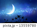 月 椰子の木 天の川のイラスト 13559780