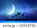 天の川 椰子の木 三日月のイラスト 13559781