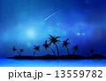 流れ星 ほうき星 椰子の木のイラスト 13559782