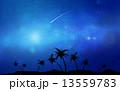 流れ星 ほうき星 椰子の木のイラスト 13559783