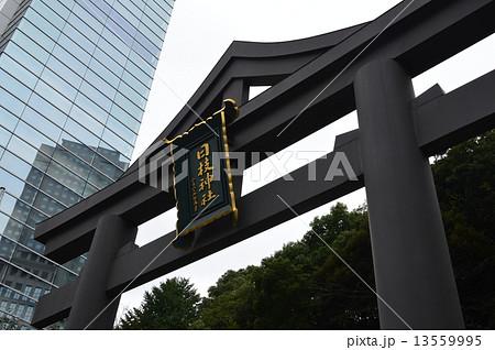 「日枝神社」の額・鳥居(東京都千代田区永田町2丁目) 13559995
