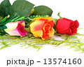 Colorful roses 13574160