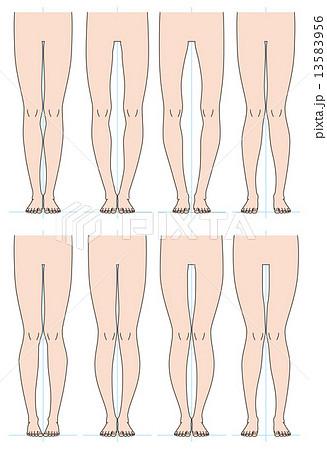 脚の形のイラスト素材 [13583956...