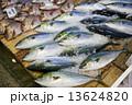 魚市場ブリと鯛 13624820