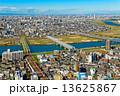 江戸川に架かる橋と都市風景 13625867