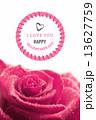 Valentines day vector 13627759