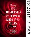 Valentines day vector 13627803