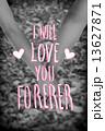 Valentines day vector 13627871
