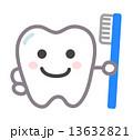 はぶらしを持つ歯 13632821