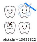 歯はみがきをする 13632822